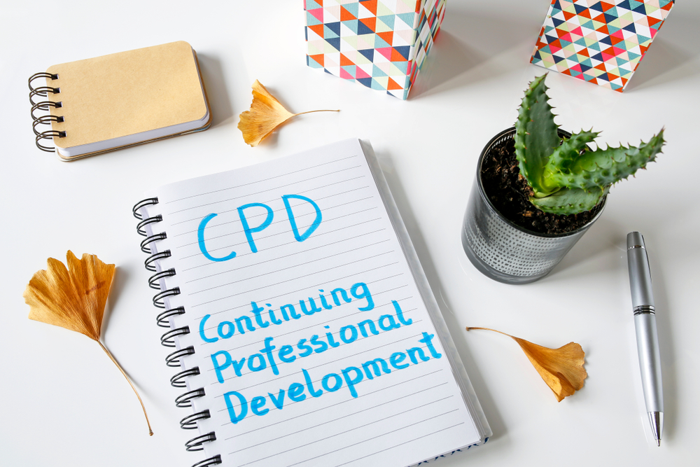 Should Supply Teacher be Paid More and Given More Support With CPD?