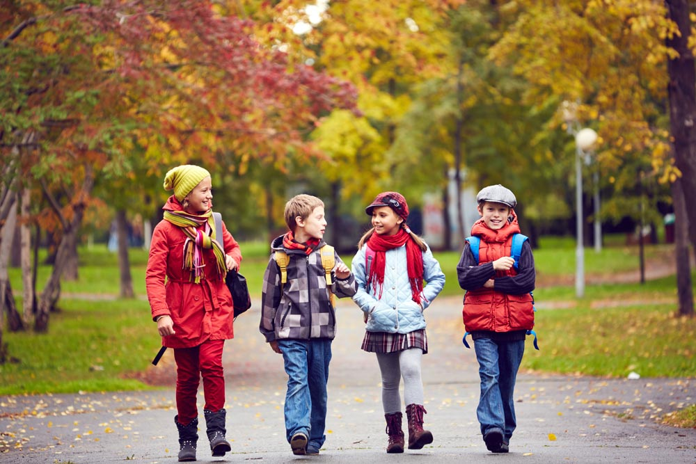Embracing seasonal changes with your primary class